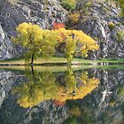 Autumnal Reflections by solena432