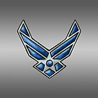 USAF Insignia (colored pencil) by screamingtiki