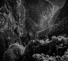 Bungonia Mono Sunrise by Ian English