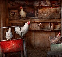 Animal - Chicken - The duck is a spy  by Mike  Savad