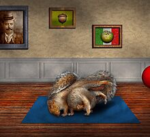 Animal - Squirrel - And stretch Two Three Four by Mike  Savad