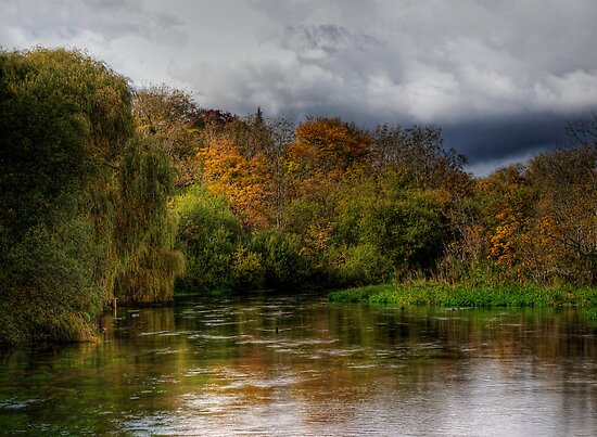 The river Itchen at Itchen Stoke, Hampshire by NeilAlderney
