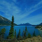 Lake Bennett Looking North by Yukondick