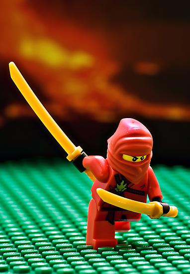 The Red Ninja by Dan Phelps