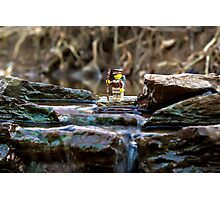 Cross the streams Photographic Print