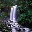 Hopetoun Falls by KateJasmine