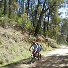 mitta to mount beauty 2012 by Pete Simpson