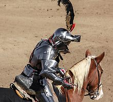 Knight Time by heatherfriedman