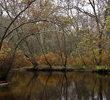 Riverwood Golds by RVogler