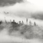 Lost in the Clouds by BelleFlores