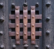 Door Grill by fg-ottico