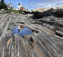 Pemaquid Point Light Station by Lori Deiter