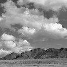 Snake Valley B&amp;W by elasita