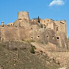 The Castle of Cardona by KAREN SCHMIDT