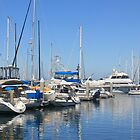 King Harbor, Redondo Beach, CA by Tedd Wenrick