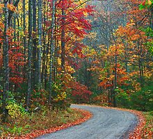 ROAD,TREMONT by Chuck Wickham