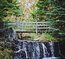 Bowring Park Waterfall by Sarah Hall