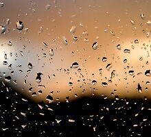 Rain Drops on window 2 by Phillip Shannon