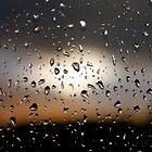 Rain Drops on window 1 by Phillip Shannon