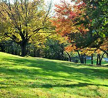 Pretty Foliage by savvysisstudio