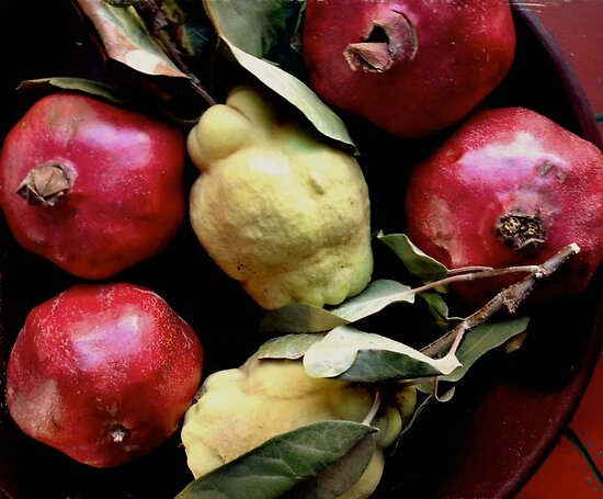 Quince and Pomegranates by Barbara Wyeth