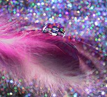 Soft Feathers & Bokeh by Morag Bates