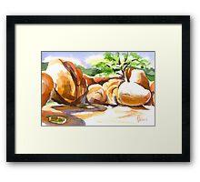 Elephant Rocks State Park Framed Print
