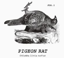 The almighty Pigeon Rat Kids Clothes