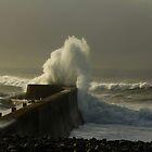 Wave by tonyredto