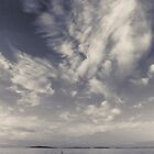 Dusk over harbour 2 by Phillip Shannon