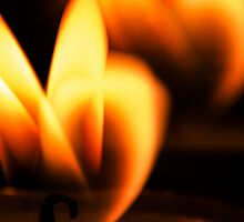 Macro Flame by Handy Andy Pandy