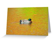 Color Duck Greeting Card