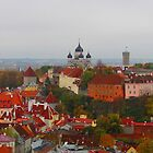 Atop Turreted Tallinn by Mary-Elizabeth Kadlub