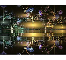 Night Flowers Photographic Print