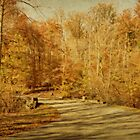 Autumn Drive by Sandy Keeton