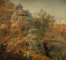 Rock Formation by Sandy Keeton