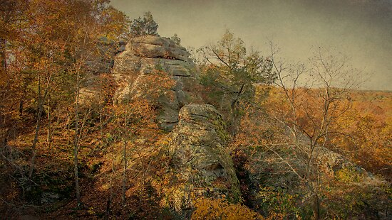 Rock Formation by Sandy Keeton