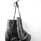 Hanging Boxing Gloves by Mike Taylor
