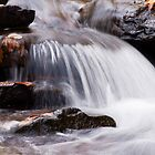 Rushing Creek by Jeanne Sheridan