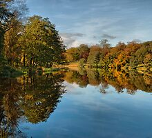 Autumnal Reflections by Irene  Burdell
