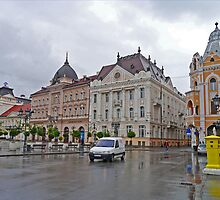 Freedom Square, Novi Sad, Serbia by Margaret  Hyde