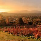 Corstorphine Hill Sunrise Panorama by Steve Jensen