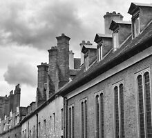 Cambridge Roofs and Chimneys by Pauline Tims