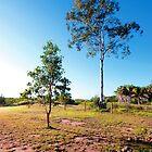 Hervey Bay, Queensland by Sparklerpix