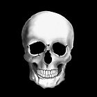 Skull on Black by TinaGraphics