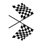 Checkered Flags by TinaGraphics