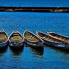 Canoe Row by Rob Atkinson