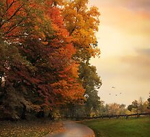Autumn Trail  by Jessica Jenney