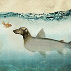 dog fish by vinpez