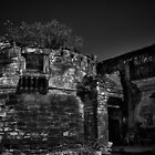 Memories of glorious past - B&amp;W by Biren Brahmbhatt